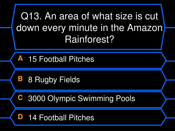 Q13. An area of what size is cut down every minute in the Amazon Rainforest?