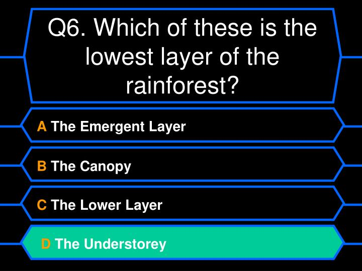 Q6. Which of these is the lowest layer of the rainforest?