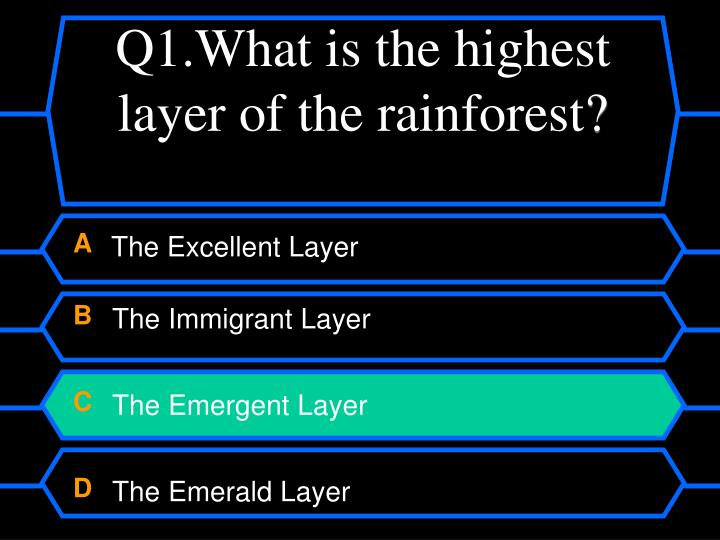 Q1.What is the highest layer of the rainforest