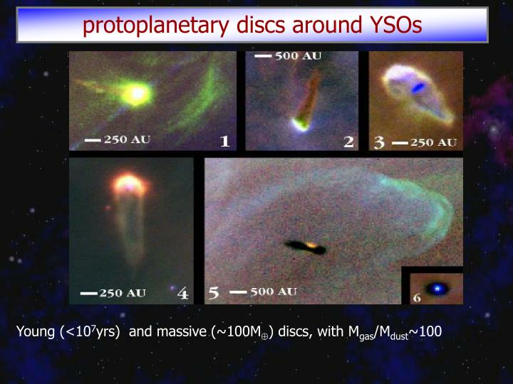protoplanetary discs around YSOs
