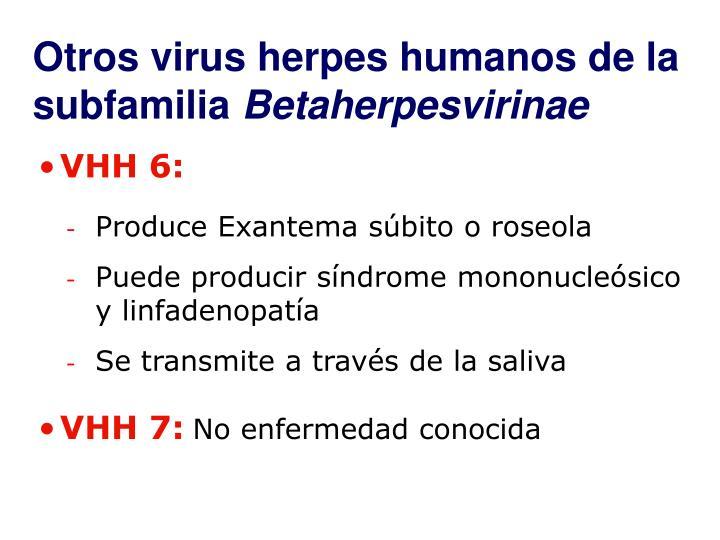 Otros virus herpes humanos de la subfamilia