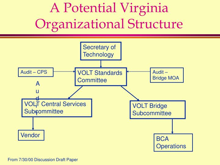 A Potential Virginia Organizational Structure