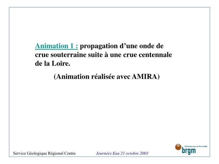 Animation 1 :