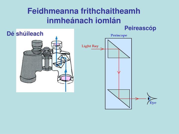 Feidhmeanna frithchaitheamh inmheánach iomlán