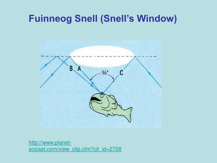 Fuinneog Snell (Snell's Window)