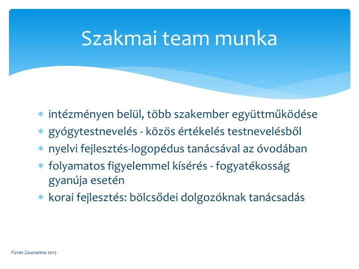 Szakmai team munka