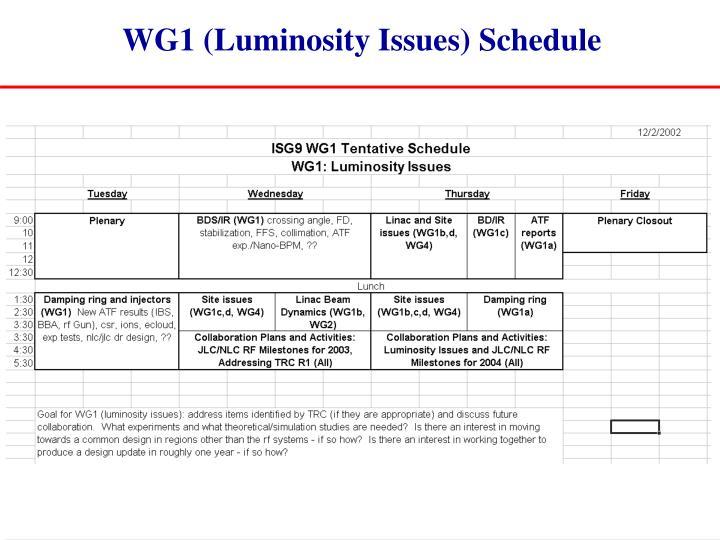 WG1 (Luminosity Issues) Schedule