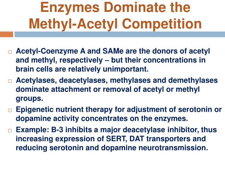 Enzymes Dominate the