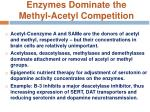 enzymes dominate the methyl acetyl competition