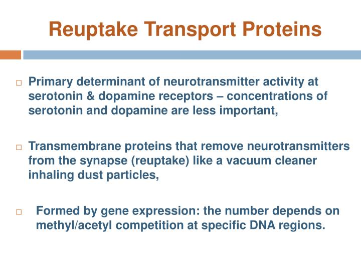 Reuptake Transport Proteins