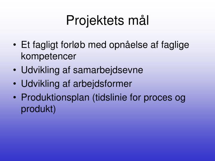 Projektets mål