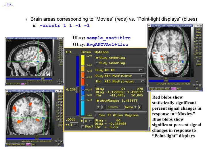 "Brain areas corresponding to ""Movies"" (reds) vs. ""Point-light displays"" (blues)"