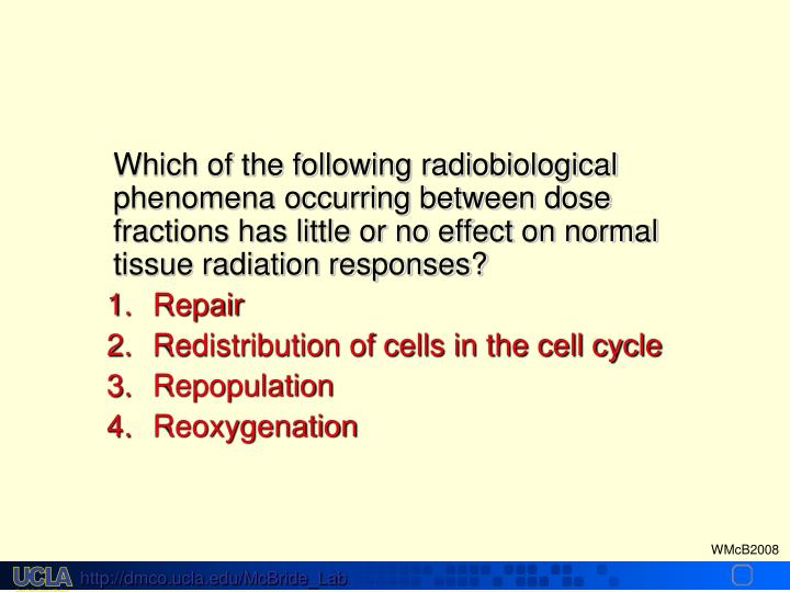 Which of the following radiobiological phenomena occurring between dose fractions has little or no effect on normal tissue radiation responses?