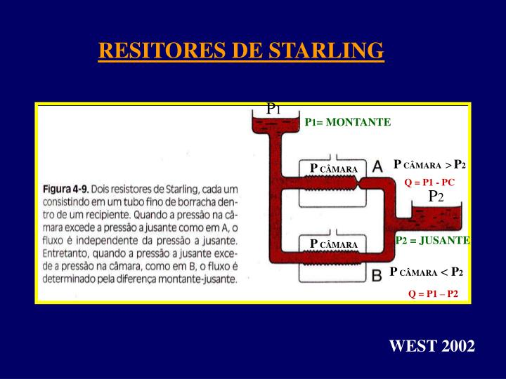RESITORES DE STARLING