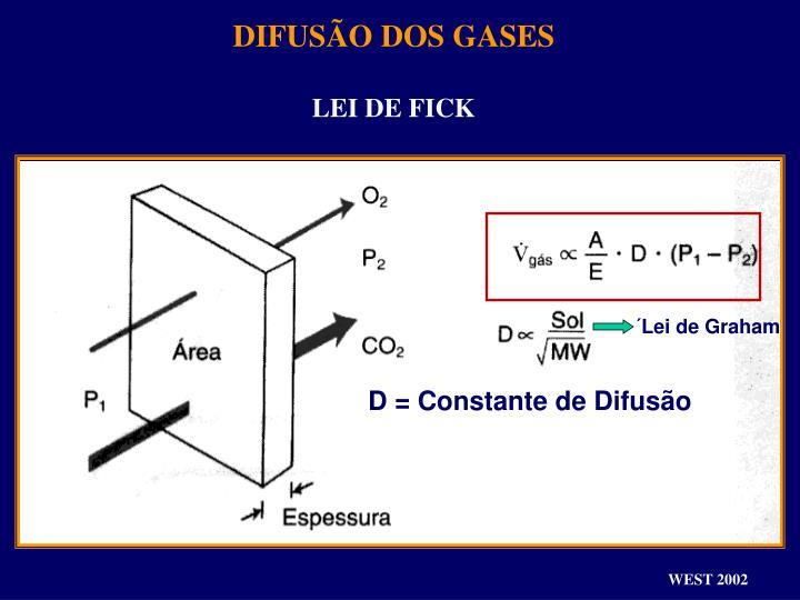 DIFUSÃO DOS GASES