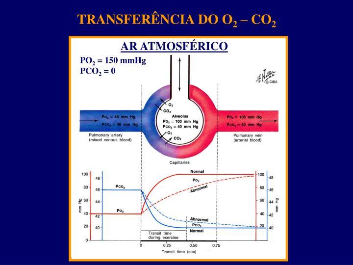 TRANSFERÊNCIA DO O