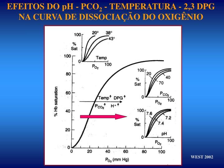 EFEITOS DO pH - PCO