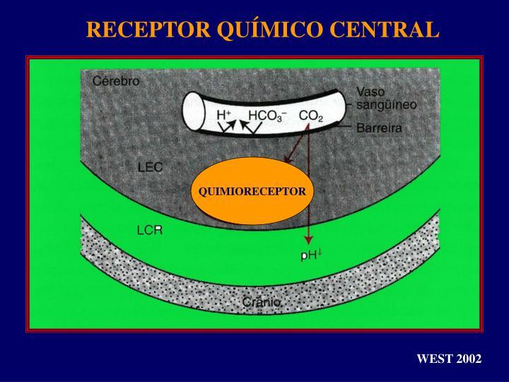 RECEPTOR QUÍMICO CENTRAL