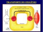 transporte do oxig nio