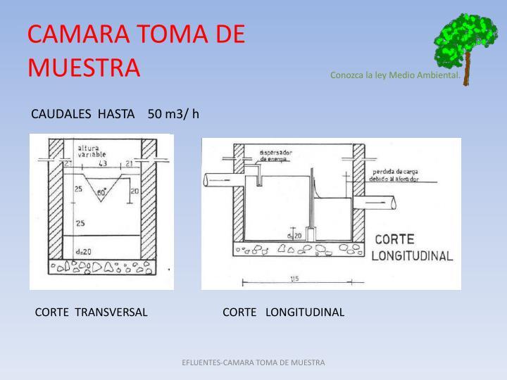 CAMARA TOMA DE