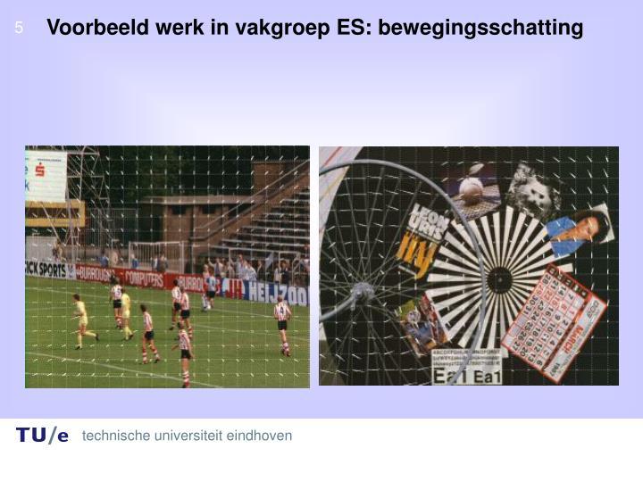 Voorbeeld werk in vakgroep ES: bewegingsschatting