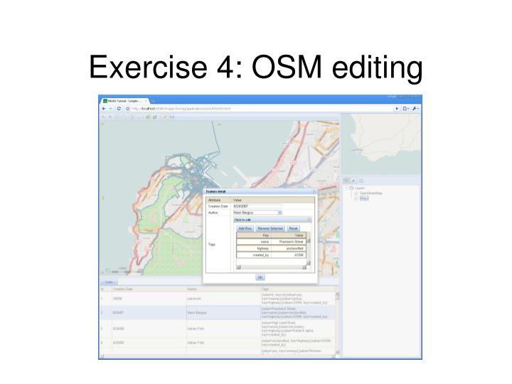 Exercise 4: OSM editing