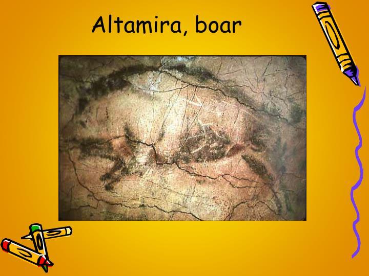 Altamira, boar