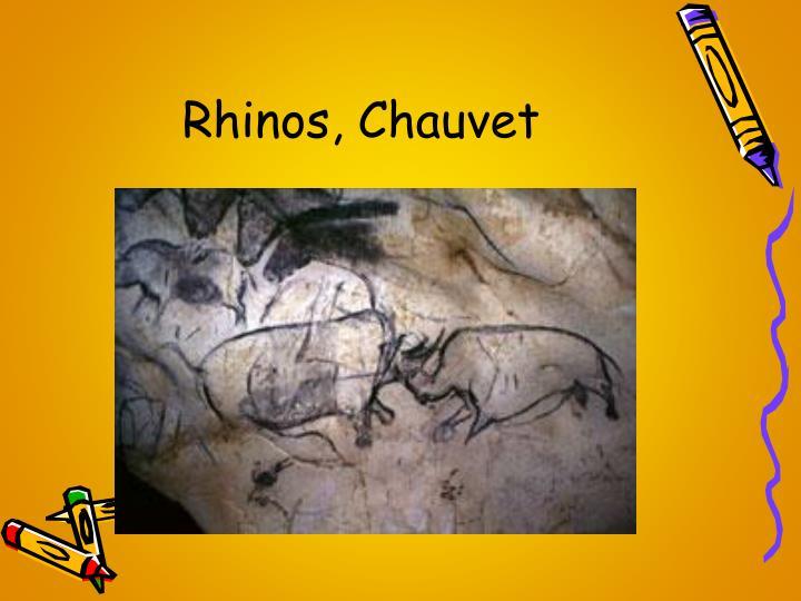 Rhinos, Chauvet
