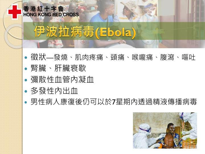 伊波拉病毒