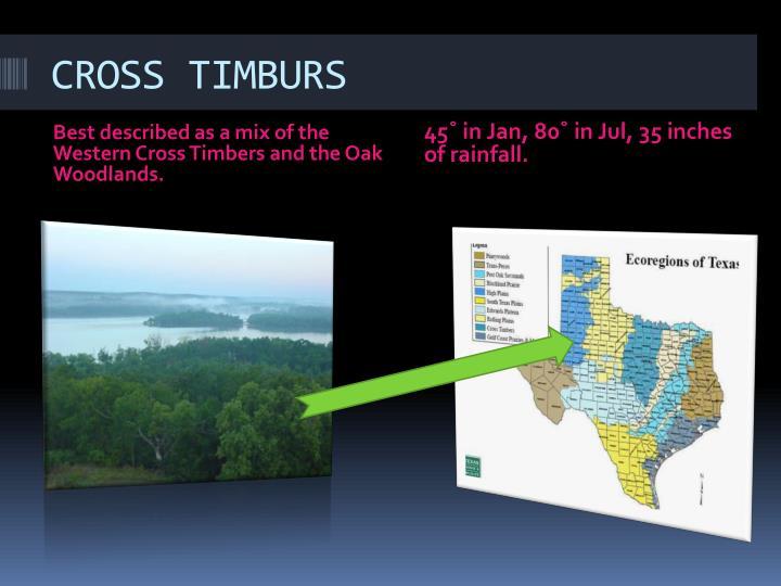 CROSS TIMBURS