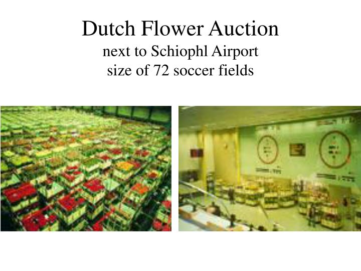 Dutch Flower Auction