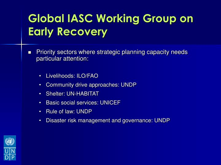 Global IASC Working Group on