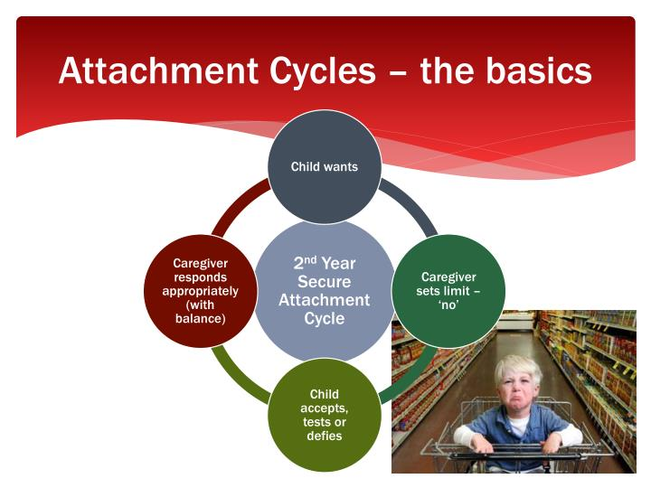 Attachment Cycles – the basics