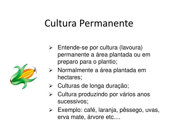 Cultura Permanente