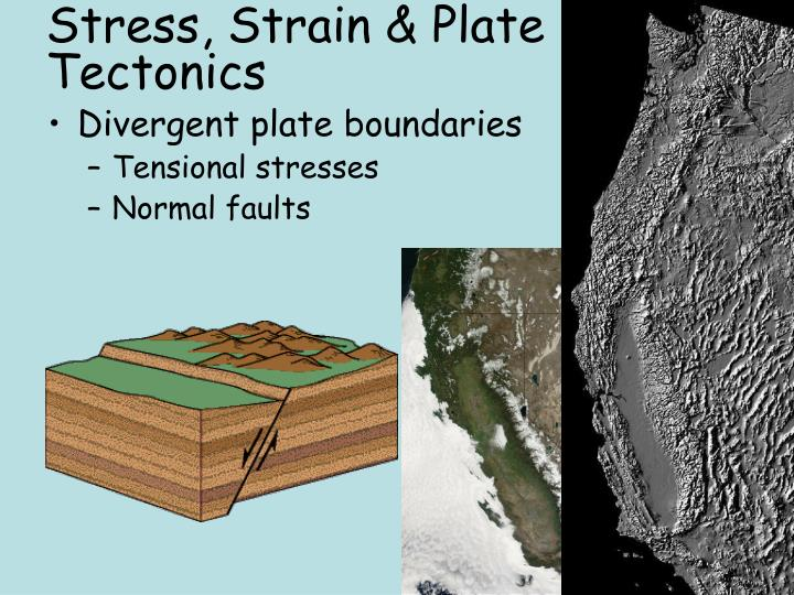 Stress, Strain & Plate