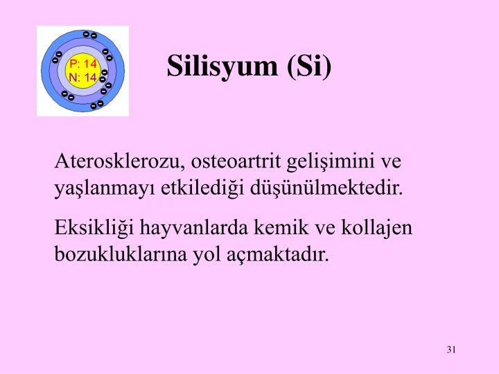 Silisyum (Si)