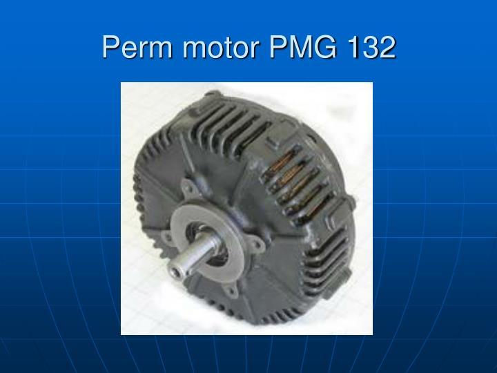 Perm motor PMG 132
