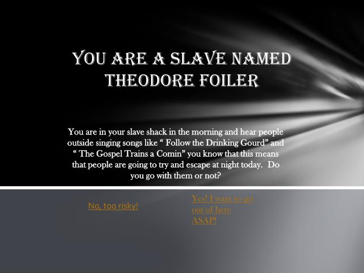 You are a slave named Theodore foiler