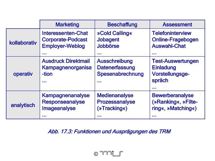 Abb. 17.3: Funktionen und Ausprägungen des TRM