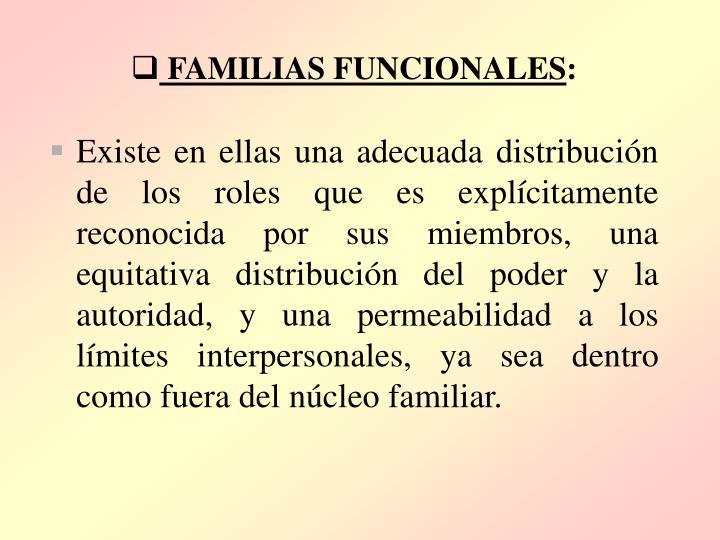 FAMILIAS FUNCIONALES