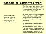 example of committee work