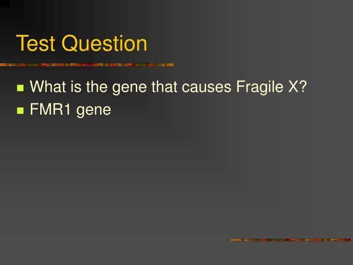 Test Question