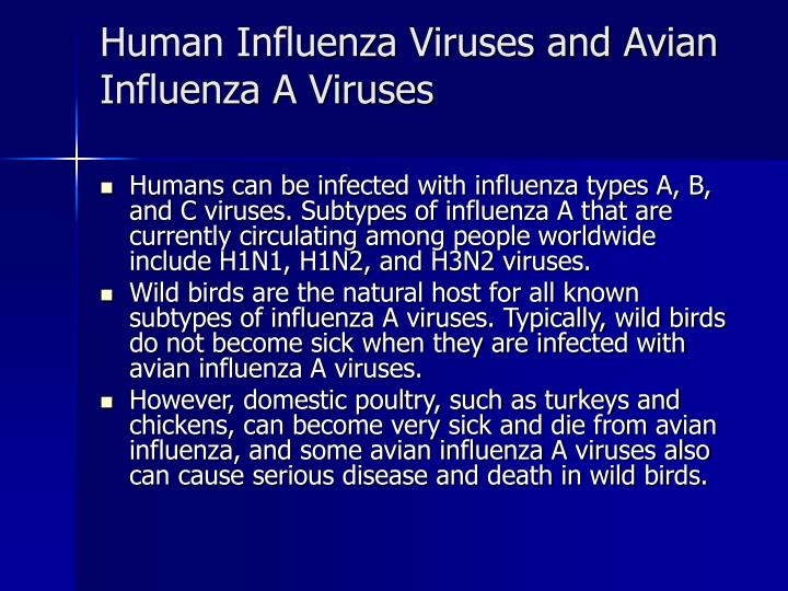 Human Influenza Viruses and Avian Influenza A Viruses