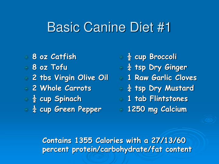 Basic Canine Diet #1