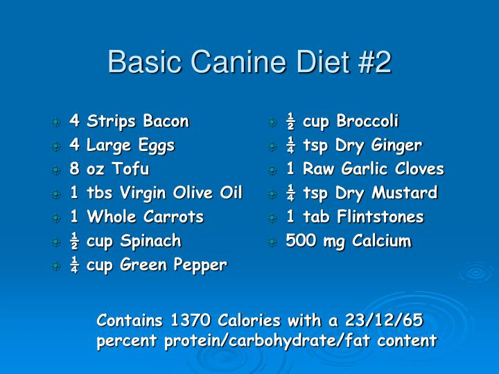 Basic Canine Diet #2