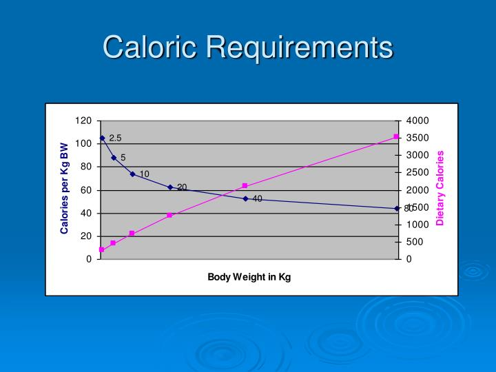 Caloric Requirements