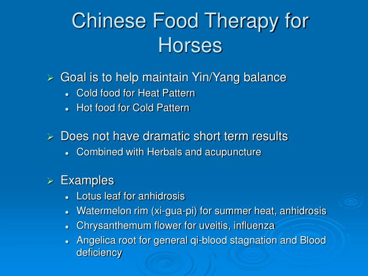 Chinese Food Therapy for Horses
