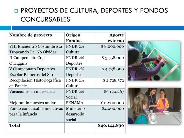 PROYECTOS DE CULTURA,