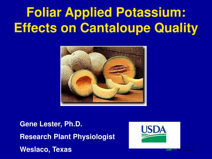 Foliar Applied Potassium: Effects on Cantaloupe Quality