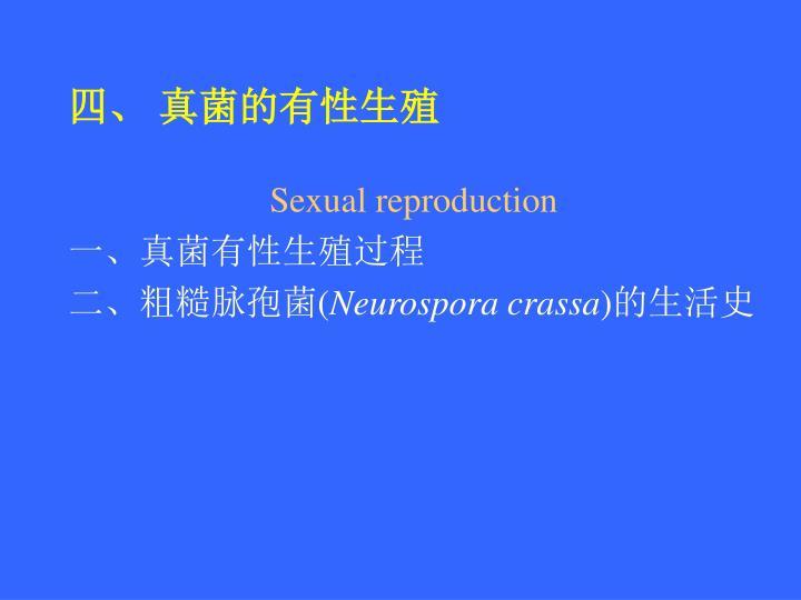 四、 真菌的有性生殖